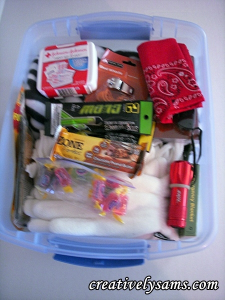 Completed & Organized Winter Emergency Kit