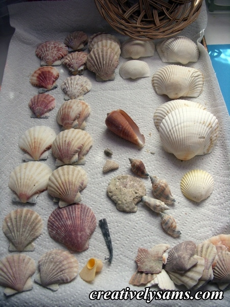 Separated shells
