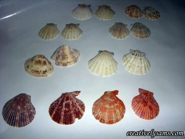 Glittered Shell Ornaments